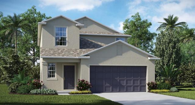 14844 Crescent Rock Drive, Wimauma, FL 33598 (MLS #T3176098) :: Lovitch Realty Group, LLC