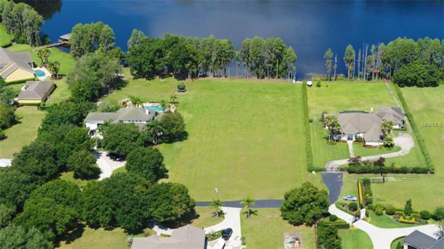 19708 Kell Estates Lane, Lutz, FL 33549 (MLS #T3176099) :: Team Bohannon Keller Williams, Tampa Properties