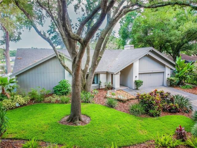 1713 Magdalene Manor Drive, Tampa, FL 33613 (MLS #T3176108) :: Bridge Realty Group