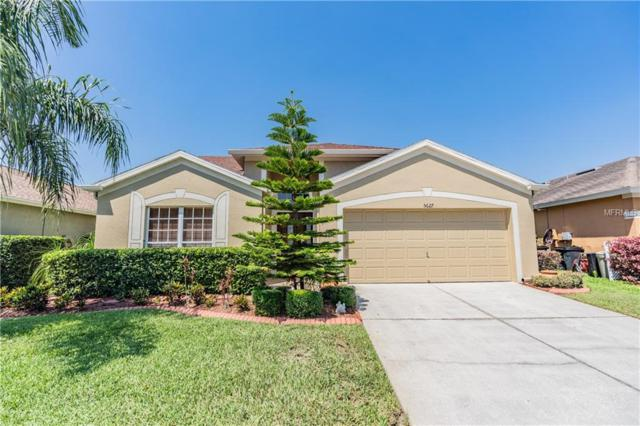 5627 War Admiral Drive, Wesley Chapel, FL 33544 (MLS #T3176109) :: Griffin Group