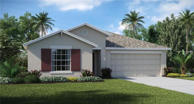 922 Zone Tailed Hawk Place, Ruskin, FL 33570 (MLS #T3176118) :: Lovitch Realty Group, LLC