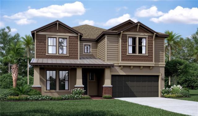 11801 Jackson Landing Place, Tampa, FL 33624 (MLS #T3176126) :: Burwell Real Estate