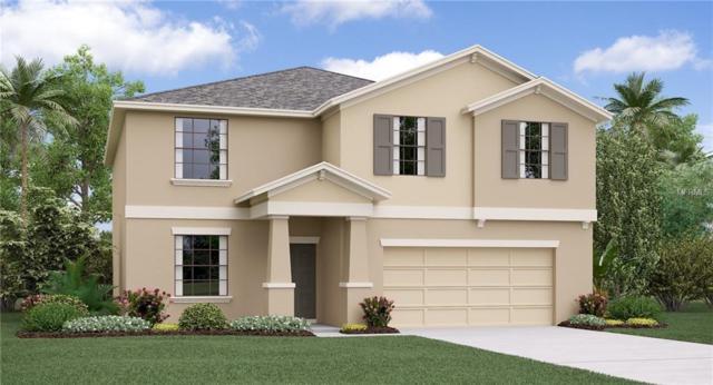 1704 Broad Winged Hawk Drive, Ruskin, FL 33570 (MLS #T3176127) :: Lovitch Realty Group, LLC