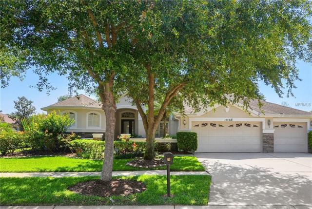 15721 Ibisridge Drive, Lithia, FL 33547 (MLS #T3176134) :: Team Bohannon Keller Williams, Tampa Properties