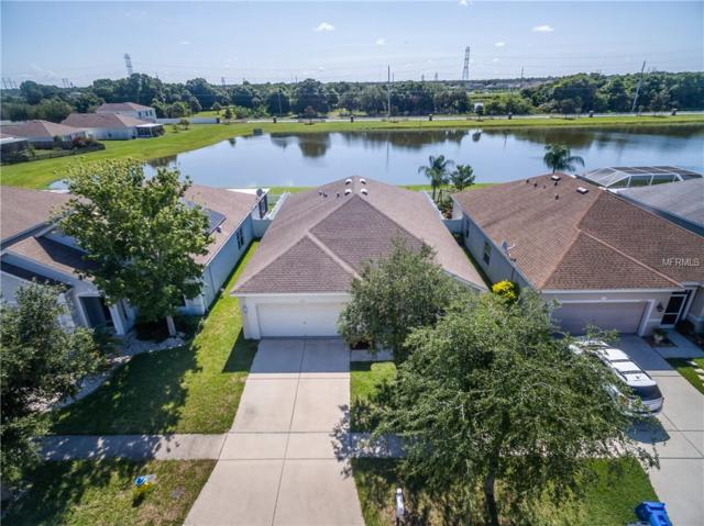 12004 Fern Blossom Drive, Gibsonton, FL 33534 (MLS #T3176139) :: The Duncan Duo Team