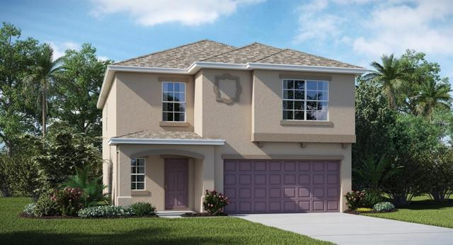 7238 Camp Island Avenue, Ruskin, FL 33573 (MLS #T3176147) :: Medway Realty