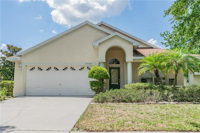 19525 Morden Blush Drive, Lutz, FL 33558 (MLS #T3176153) :: Team 54