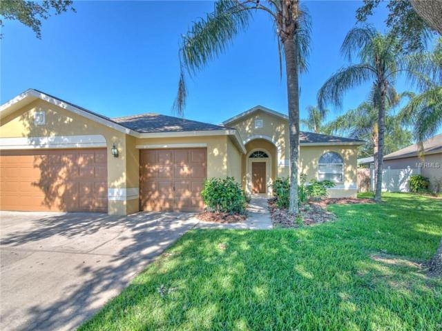 1815 Cattleman Drive, Brandon, FL 33511 (MLS #T3176160) :: Griffin Group