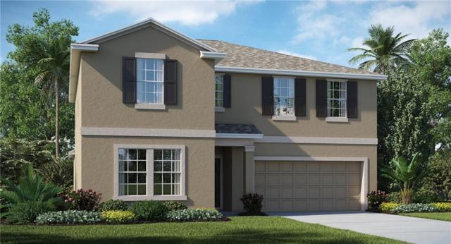 15706 Miller Creek Drive, Ruskin, FL 33573 (MLS #T3176172) :: Medway Realty