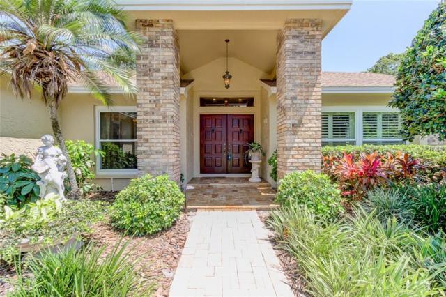 615 Tomoka Drive, Palm Harbor, FL 34683 (MLS #T3176176) :: Team Bohannon Keller Williams, Tampa Properties