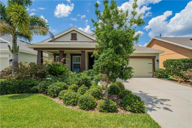 6517 Nestall Court, Apollo Beach, FL 33572 (MLS #T3176184) :: The Duncan Duo Team