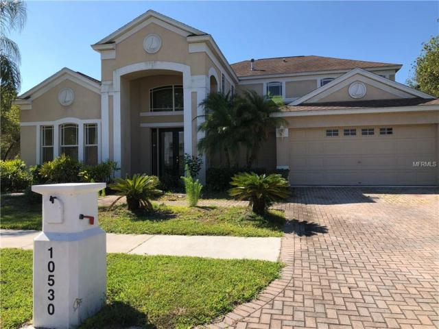 10530 Canary Isle Drive, Tampa, FL 33647 (MLS #T3176197) :: Griffin Group
