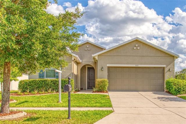 11111 Hartford Fern Drive, Riverview, FL 33569 (MLS #T3176205) :: Lovitch Realty Group, LLC