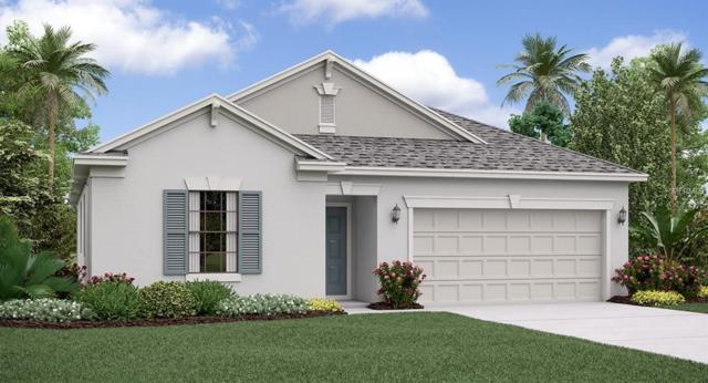 21816 Crest Meadow Drive, Land O Lakes, FL 34637 (MLS #T3176208) :: The Duncan Duo Team