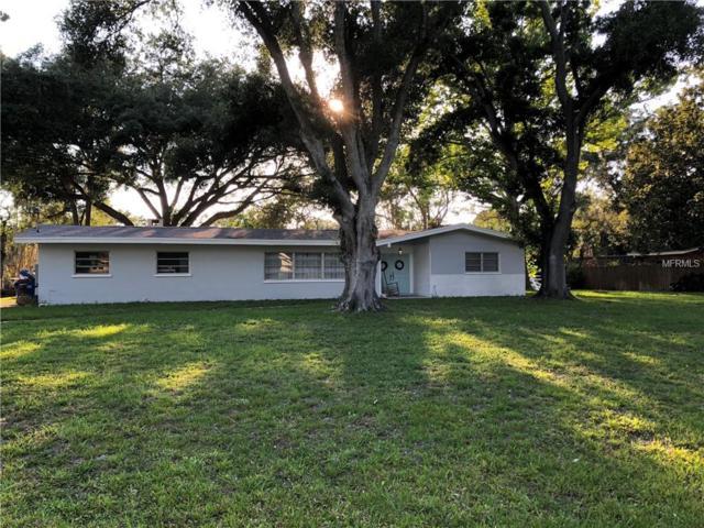 1712 Robinhood Lane, Clearwater, FL 33764 (MLS #T3176210) :: Lovitch Realty Group, LLC