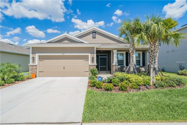 6415 Triton Lane, Apollo Beach, FL 33572 (MLS #T3176217) :: Team Bohannon Keller Williams, Tampa Properties