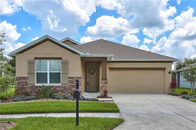 32624 Rapids Loop, Wesley Chapel, FL 33545 (MLS #T3176235) :: Team Bohannon Keller Williams, Tampa Properties