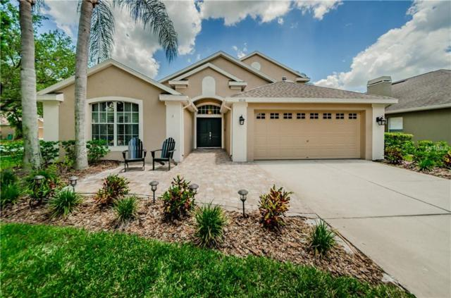 10131 Downey Lane, Tampa, FL 33626 (MLS #T3176259) :: The Duncan Duo Team