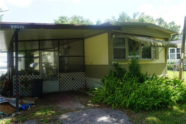 39019 Central Avenue, Zephyrhills, FL 33540 (MLS #T3176274) :: The Duncan Duo Team