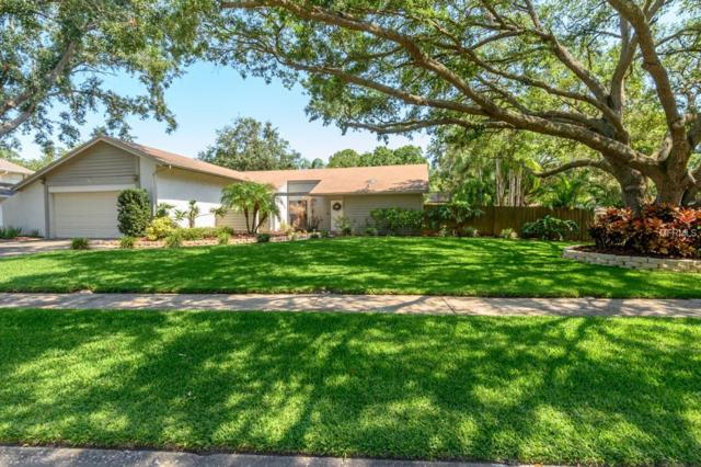 4601 Farmhouse Drive, Tampa, FL 33624 (MLS #T3176279) :: Team Bohannon Keller Williams, Tampa Properties