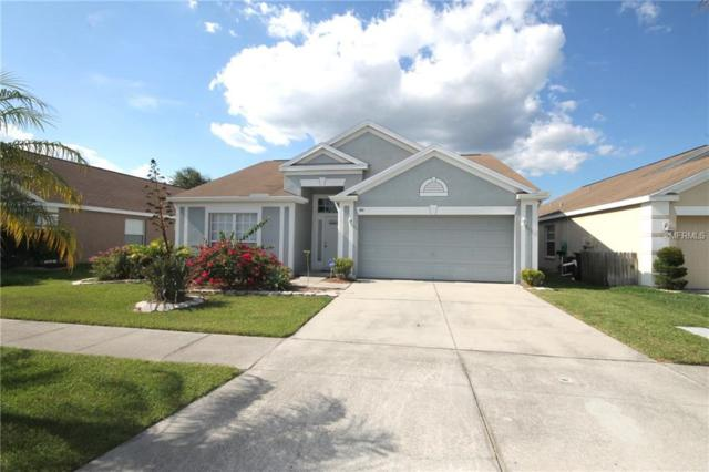 12007 Dawn Vista Dr, Riverview, FL 33578 (MLS #T3176287) :: The Duncan Duo Team