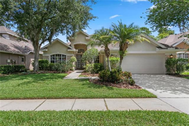 10415 Greendale Drive, Tampa, FL 33626 (MLS #T3176292) :: The Duncan Duo Team