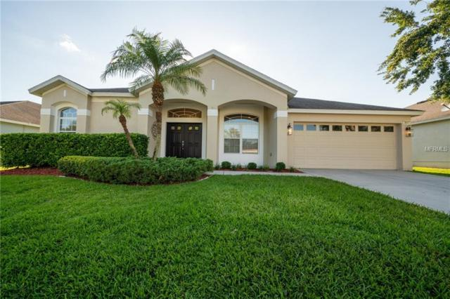 3517 Juneberry Drive, Wesley Chapel, FL 33543 (MLS #T3176294) :: The Duncan Duo Team