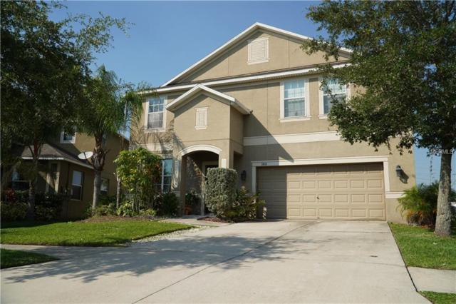1801 Palm Warbler Lane, Ruskin, FL 33570 (MLS #T3176315) :: Lovitch Realty Group, LLC
