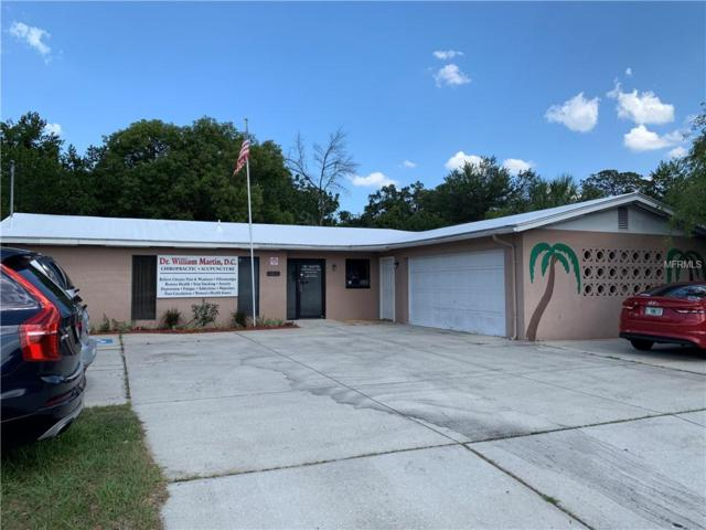 1211 N Parsons Avenue, Brandon, FL 33510 (MLS #T3176320) :: Jeff Borham & Associates at Keller Williams Realty