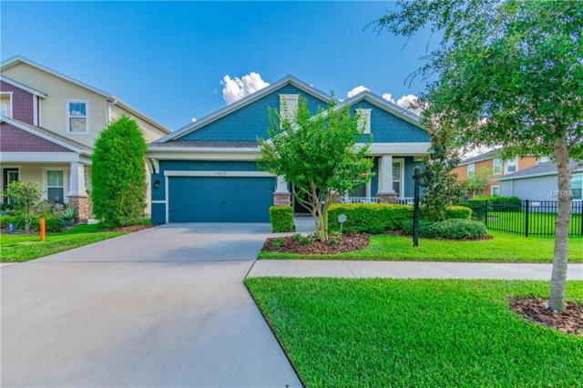 14315 Blue Hydrangea Ct, Lithia, FL 33547 (MLS #T3176324) :: The Duncan Duo Team