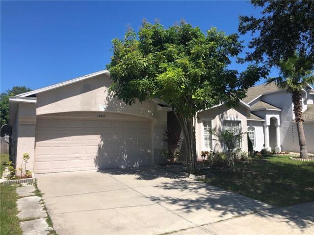 12823 Kings Lake Drive, Gibsonton, FL 33534 (MLS #T3176325) :: Dalton Wade Real Estate Group