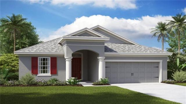 33193 Shadow Branch Lane, Wesley Chapel, FL 33545 (MLS #T3176326) :: Mark and Joni Coulter | Better Homes and Gardens