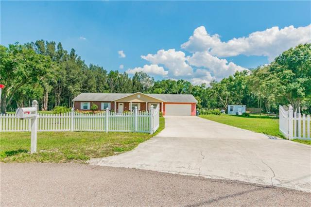 2502 Nettlow Lane, Wimauma, FL 33598 (MLS #T3176327) :: Jeff Borham & Associates at Keller Williams Realty
