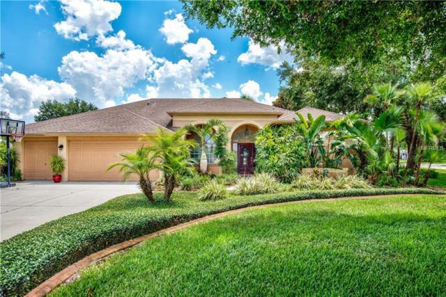 1418 Fishing Lake Drive, Odessa, FL 33556 (MLS #T3176333) :: Team Bohannon Keller Williams, Tampa Properties