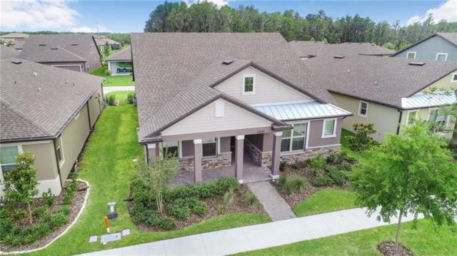 12846 Payton Street, Odessa, FL 33556 (MLS #T3176342) :: Jeff Borham & Associates at Keller Williams Realty
