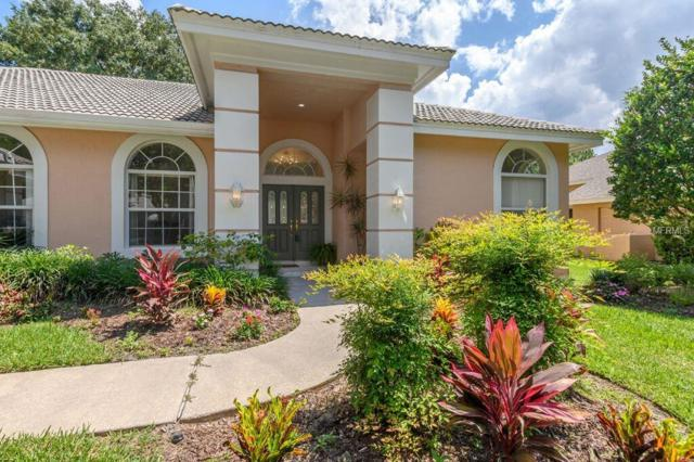 Address Not Published, Tampa, FL 33647 (MLS #T3176351) :: Cartwright Realty