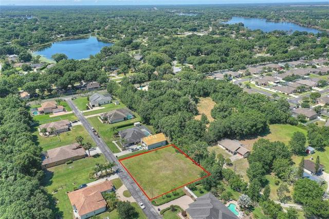 0 Aladar Court, Land O Lakes, FL 34639 (MLS #T3176355) :: Team 54