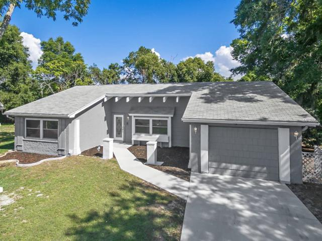 12500 River Mill Drive, Hudson, FL 34667 (MLS #T3176358) :: Jeff Borham & Associates at Keller Williams Realty