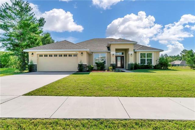 3346 Opportunity Avenue, Spring Hill, FL 34609 (MLS #T3176359) :: Lovitch Realty Group, LLC