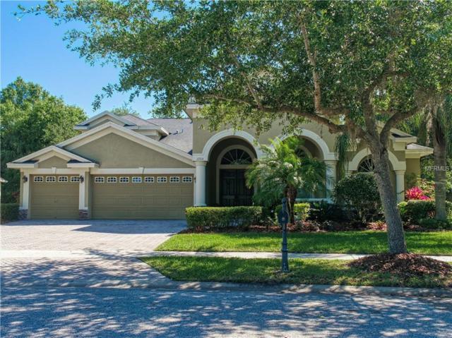 17314 Chenango Lane, Tampa, FL 33647 (MLS #T3176362) :: Team Bohannon Keller Williams, Tampa Properties