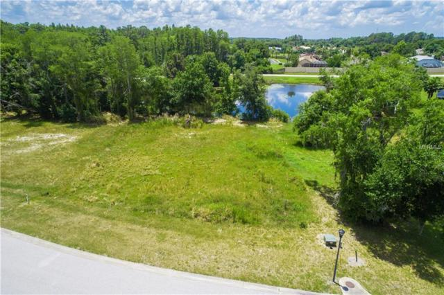 3938 Cove Lake Place, Land O Lakes, FL 34639 (MLS #T3176370) :: The Duncan Duo Team