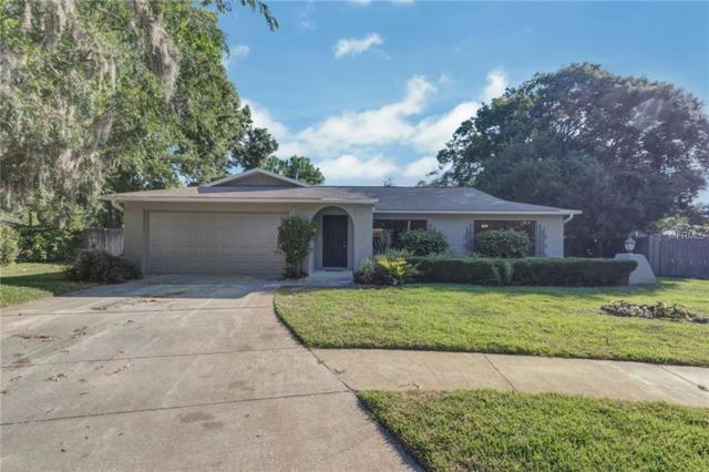 15403 Timberline Drive, Tampa, FL 33624 (MLS #T3176372) :: Team Bohannon Keller Williams, Tampa Properties