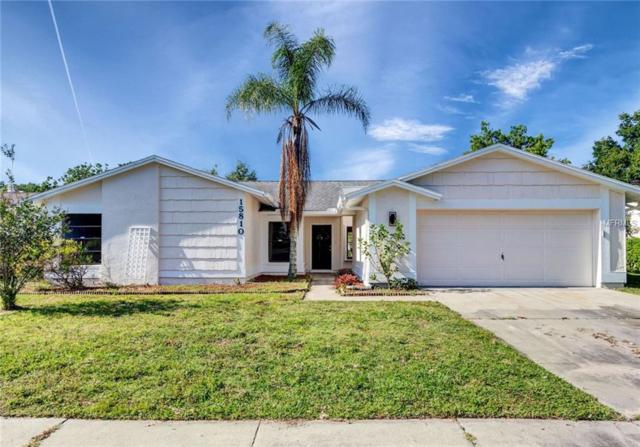 15810 Pennington Road, Tampa, FL 33624 (MLS #T3176374) :: Team Bohannon Keller Williams, Tampa Properties