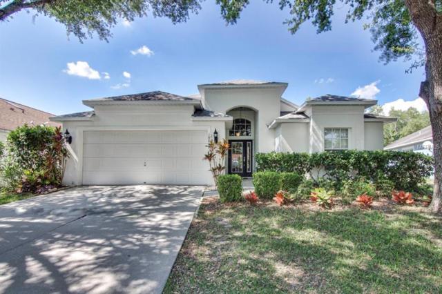 19019 Weatherstone Drive, Tampa, FL 33647 (MLS #T3176386) :: Team Bohannon Keller Williams, Tampa Properties