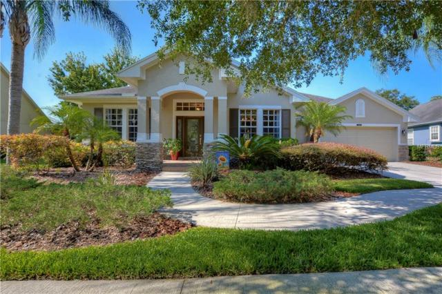 20410 Rose Cottage Way, Land O Lakes, FL 34637 (MLS #T3176417) :: Team Bohannon Keller Williams, Tampa Properties