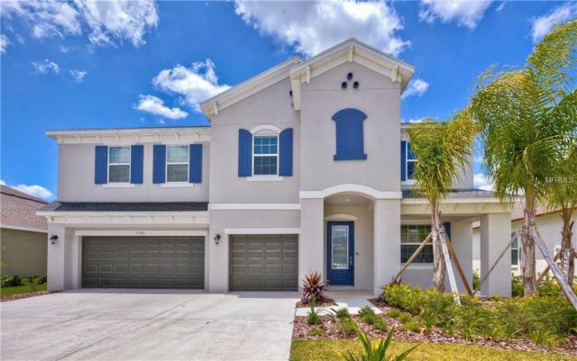 33481 Azalea Ridge Drive, Wesley Chapel, FL 33545 (MLS #T3176423) :: The Duncan Duo Team