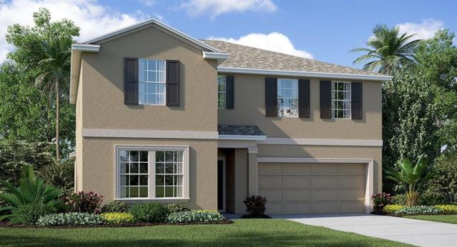 17010 White Mangrove Drive, Wimauma, FL 33598 (MLS #T3176424) :: Team Bohannon Keller Williams, Tampa Properties
