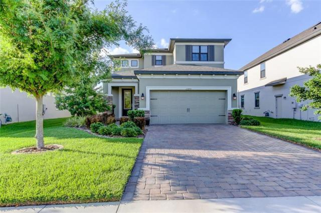 12405 Tibbetts Street, Odessa, FL 33556 (MLS #T3176426) :: Team Bohannon Keller Williams, Tampa Properties