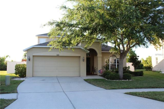 9109 Lost Mill Drive, Land O Lakes, FL 34638 (MLS #T3176428) :: The Duncan Duo Team
