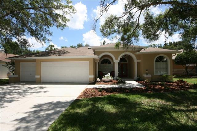 5100 Swallow Drive, Land O Lakes, FL 34639 (MLS #T3176436) :: The Duncan Duo Team